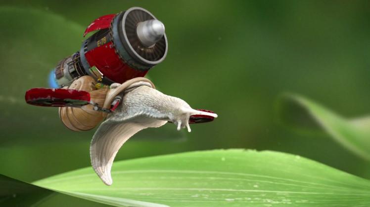 Spontaneous Snail